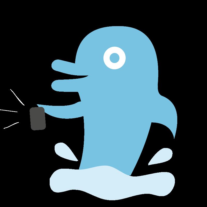 delfin-2mares-process